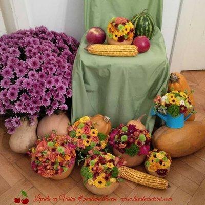 Decoruri florale pentru evenimente, vitrine si magazine - Livada cu visinisiPaula Moldovan