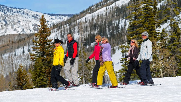 Guided Gourmet Lunch Snowshoe Tour