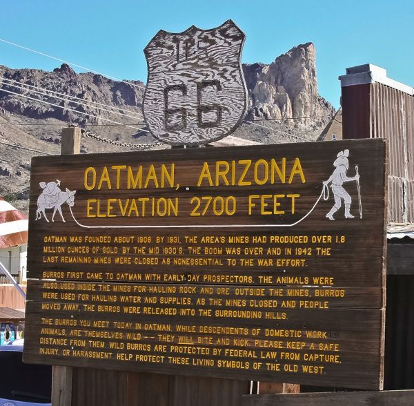 Oatman, AZ - stop by and feed the wild donkeys - they will come right up to your car