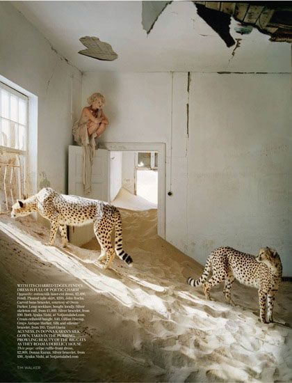 Tim Walker's 2011 photoshoot for Vogue... we were here... so surreal, such a stunning place.