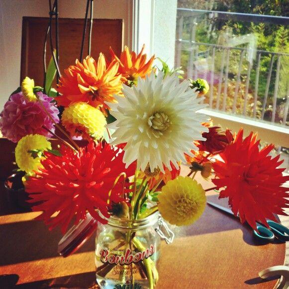 Flowers... dahlia