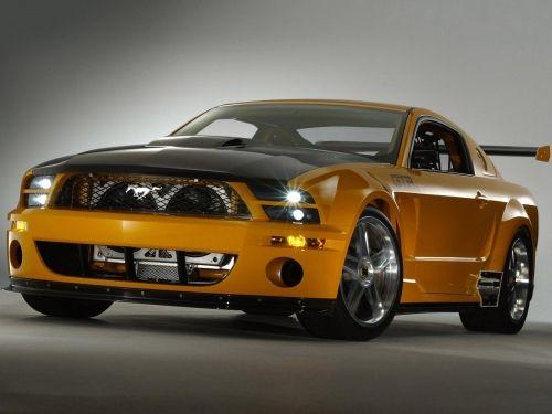 Fort Mustang