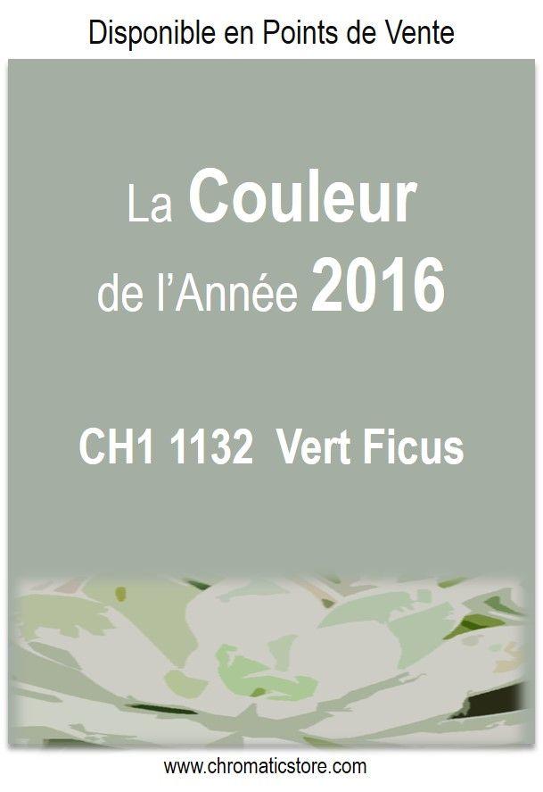 la couleur de l 39 ann e 2016 chromatic vert ficus ch1 1132. Black Bedroom Furniture Sets. Home Design Ideas