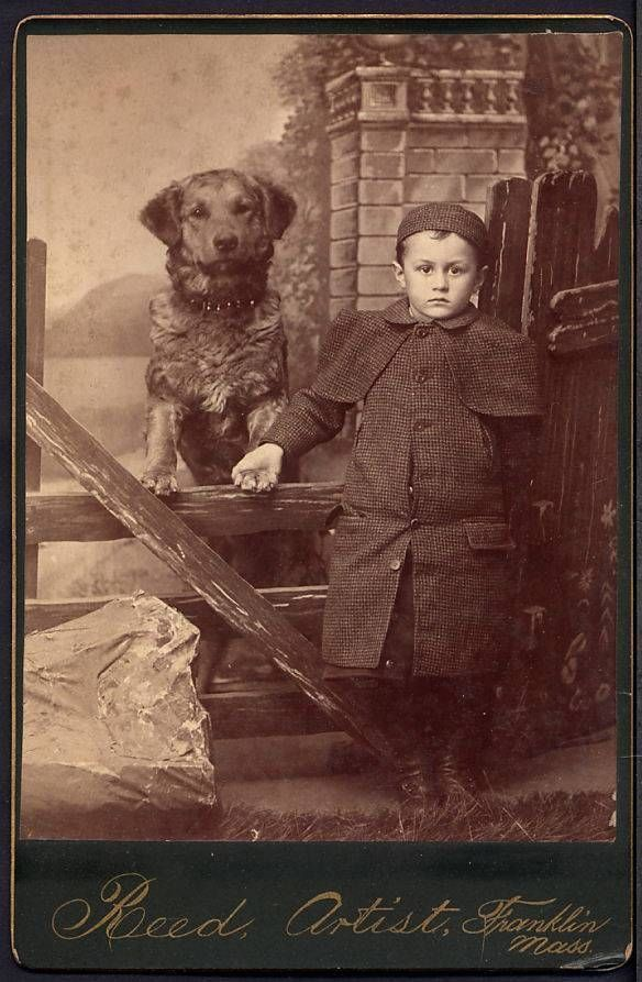 Cabinet Card Photograph Boy and His Dog Franklin MA Dog Standing Boy Holds Paw | eBay