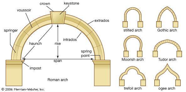 Arch Anatomy