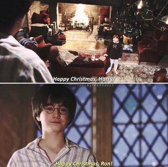 5543 best H.P. all the Way images on Pinterest | Harry potter ...