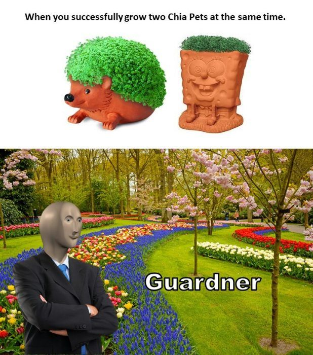 30 Home Gardening Memes For A Good Thyme The Funny Beaver In 2020 Gardening Memes Funny Pictures Images Best Funny Pictures