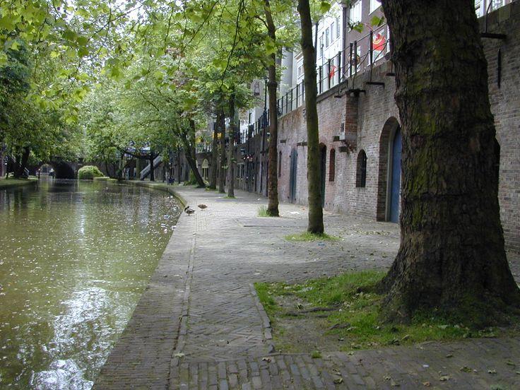 Oude Gracht Utrecht. Wat? Vrouwen? Paard?