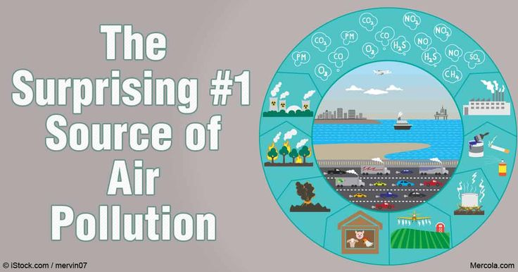 The No. 1 cause of air pollution today is linked to farming and fertilizer. You might be surprised to discover this may be present in your own backyard. http://articles.mercola.com/sites/articles/archive/2016/06/01/air-pollution-farming-fertilizer.aspx