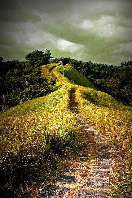 Campuan Ridge Walk   Ubud, Bali, Indonesia