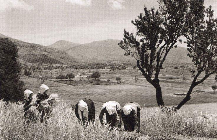 ΜΕΣΣΑΡΑ 1939 ΦΩΤΟΓΡΑΦΙΑ NELLY'Sk
