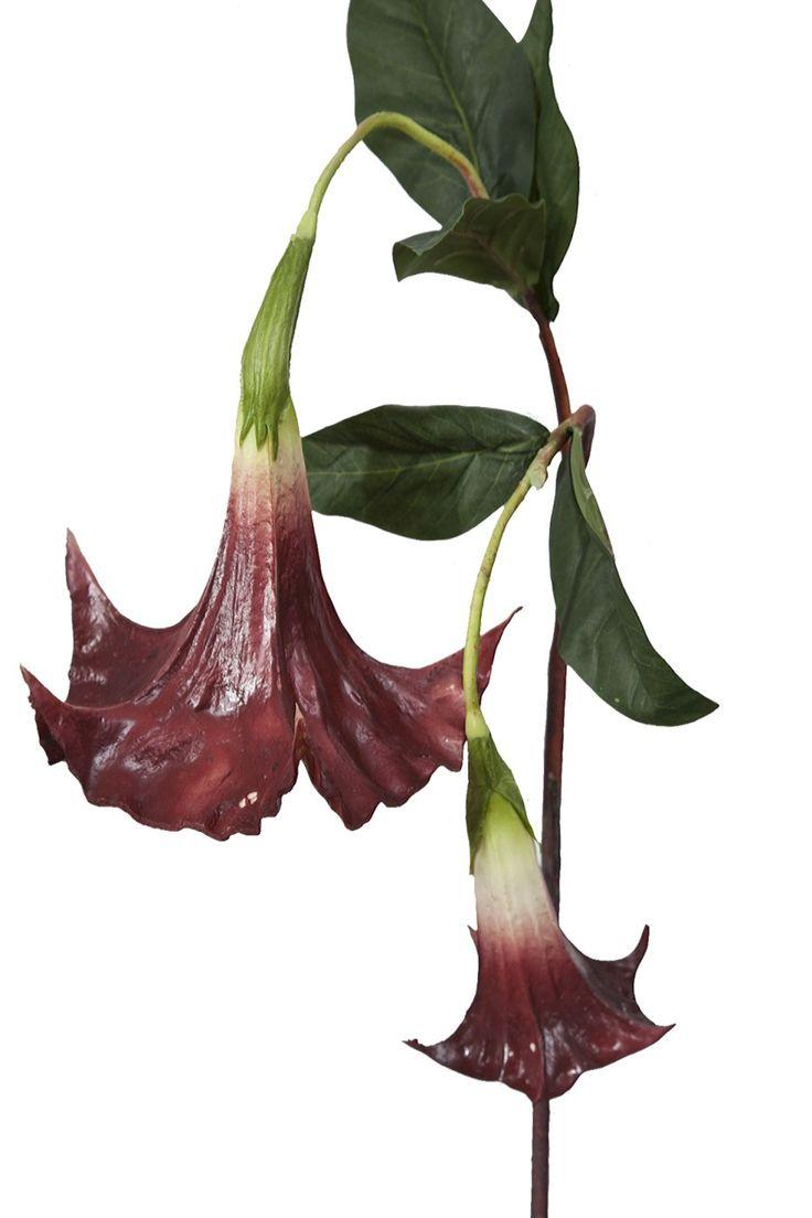 Kwiat dekoracyjny DATURA