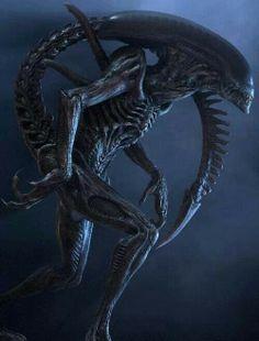 f2d0739794f296686fbfff171cda25d0--alien-vs-predator-horror-movies.jpg (236×310)