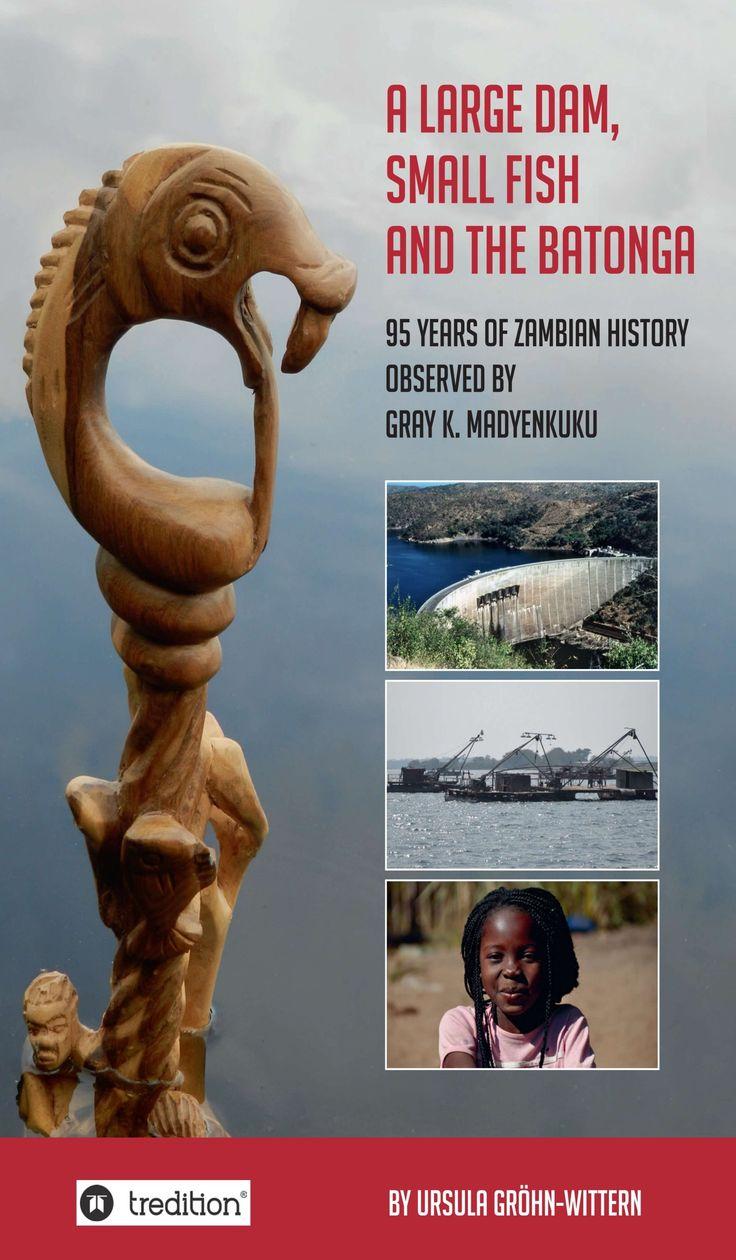 A large Dam, small Fish and the BaTonga – Insightful memoir of a Zambian man