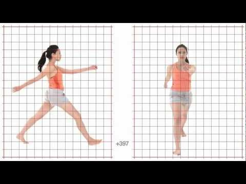 Walk Long Stride: Young Adult Female: Grid Overlay - Animation Reference