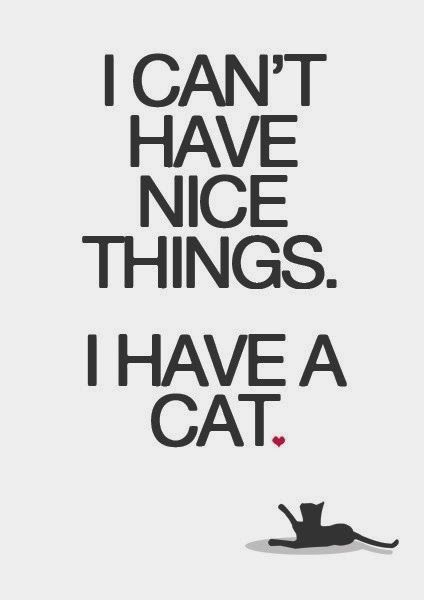 Lol that's too funny and true | http://pinterest-hot-pins.blogspot.com/