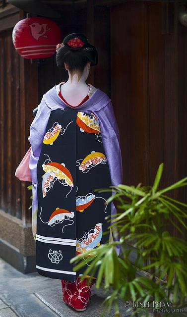 Maiko at Pontocho District, Kyoto Japan