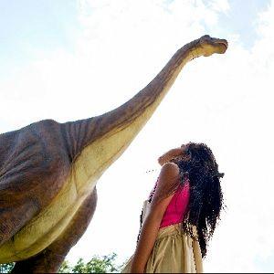 dinosaur wonderland