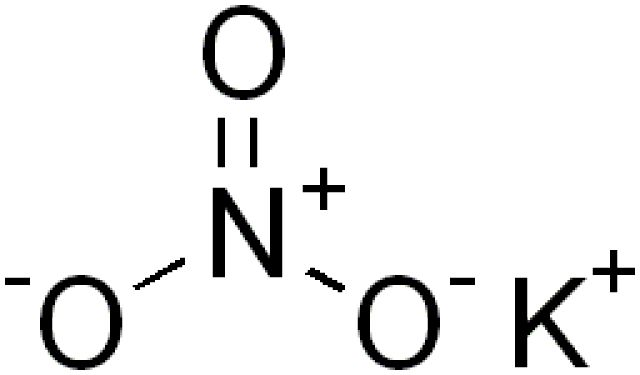 This is the chemical structure of potassium nitrate or saltpeter. - Edgar181, Creative Commons