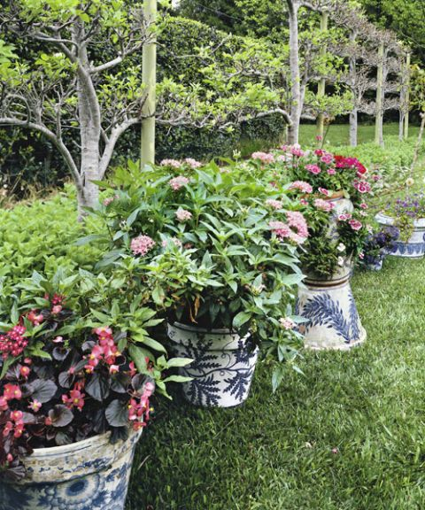 1000 images about gardening with a black thumb on for Potted garden designs