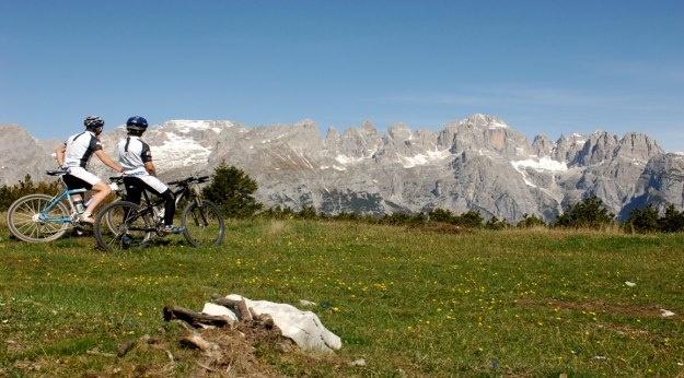 Per la tua #vacanza #attiva in #Trentino: #andalo #paganella in #mtb