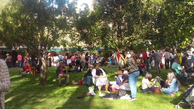 Fiesta de la Vendimia - Santa Cruz