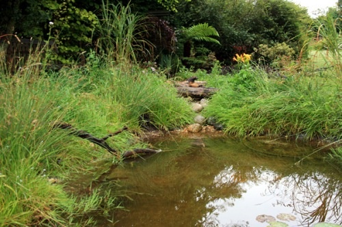 Great little blog post from the rural gardener about how you can build your own wildlife pond - Build pond wildlife haven ...