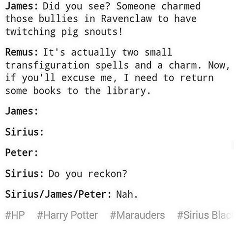 And that's how Remus became a marauder..