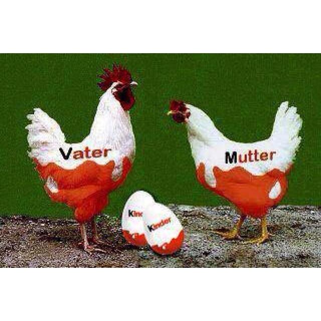 #kinder_eggs parents :)