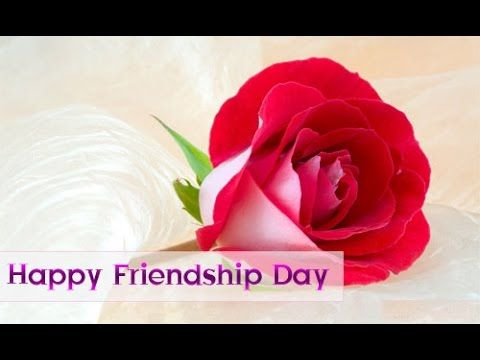 Happy friendship day 2016, wishes, Sms, Greetings, Images, Quotes, WhatsApp Video message Full HD SUBSCRIBE OUR CHANNEL FOR REGULAR …