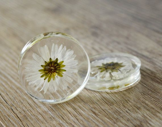 real daisy plugs flowers plugs wedding by JEWELRYandPLEASURE