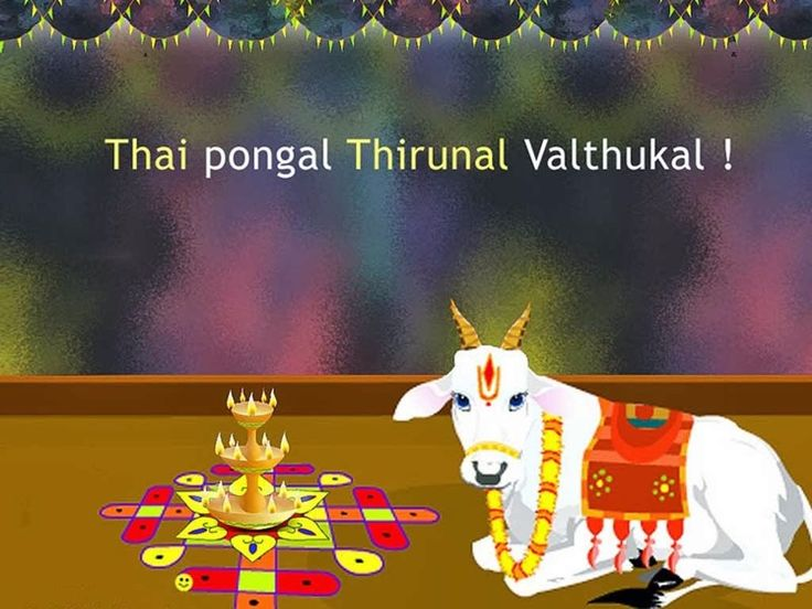 Download Happy Thai Pongal Wallpapers Gallery