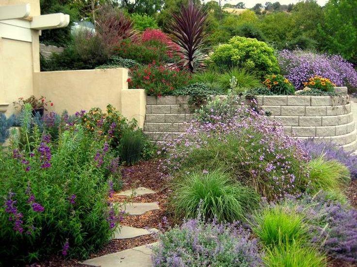17 best images about jardin mediterraneen on pinterest madagascar mediterranean garden and sons. Black Bedroom Furniture Sets. Home Design Ideas