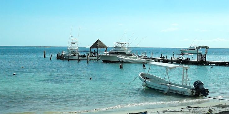 5839 best images about riviera maya beaches on pinterest for Puerto morelos fishing