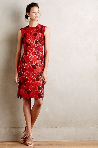 Lace Garden Pencil Dress #anthropologie