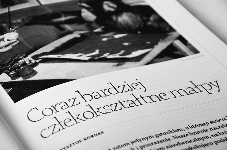 Tekst Krzysztofa Kornasa: http://www.miesiecznik.znak.com.pl/16311/coraz-bardziej-czlekoksztaltne-malpy