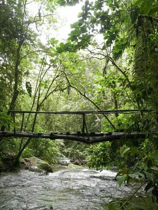 Salento,  near the Coffee farms - Colombia '13