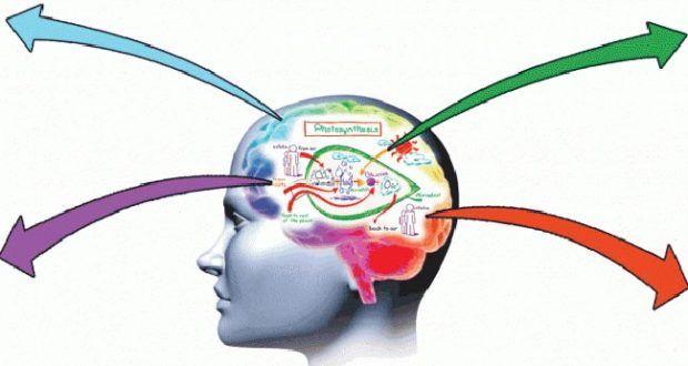 كيف تكون ذكيا خمس طرق لتصبح أكثر ذكاء كيف 24 Improve Memory Memories Essential Oils For Memory
