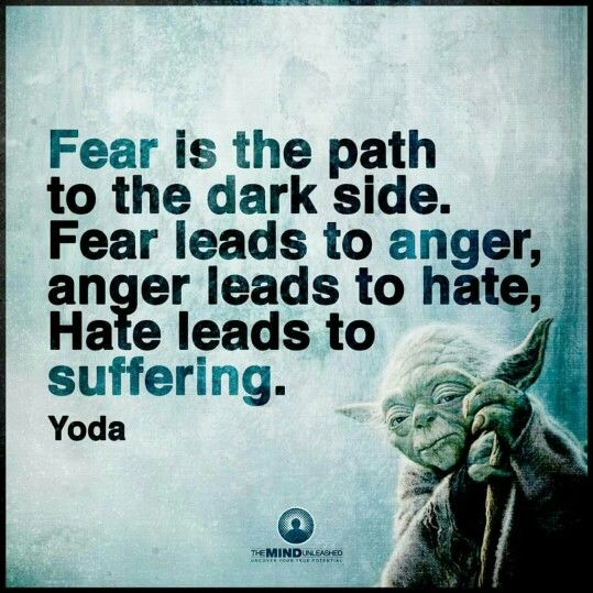 Fear is the path to the dark side. Fear leads to anger. Anger leads to hate. Hate leads to suffering. - Yoda