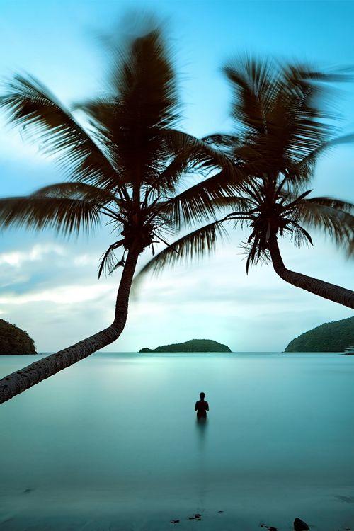 <3<3Favorite Places, St. John, St John, Summer Paradis, Keys West, Us Virgin Islands, Caribbean Beach, Beach Life, Gorgeous Beach