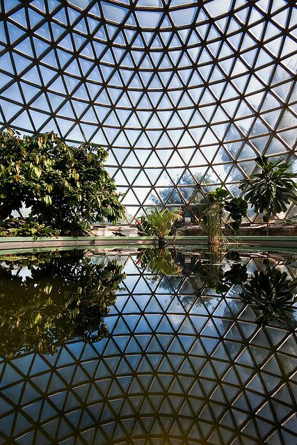 Reflection of the Tropical Dome at Brisbane Botanic Gardens, Australia (by -spam-).