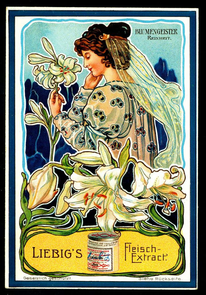 "Liebig -S713- The Language of Flowers. ""Purity"""