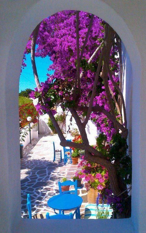 Spring colours in Paros Island, Greece