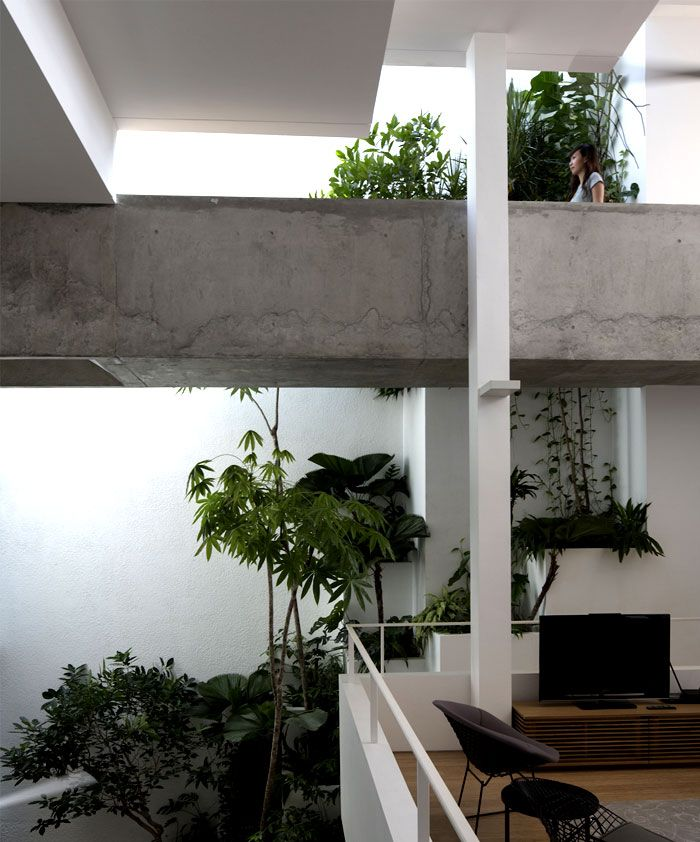 Green House with Rooftop Terrace Garden
