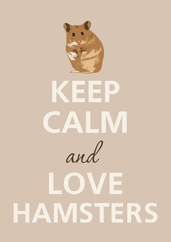 Keep Calm and Love hamsters by Agadart on Etsy