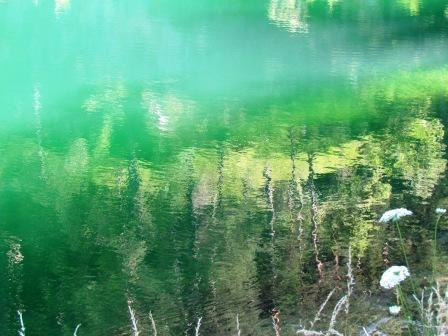 Green reflection on Smeraldo Lake - Italy