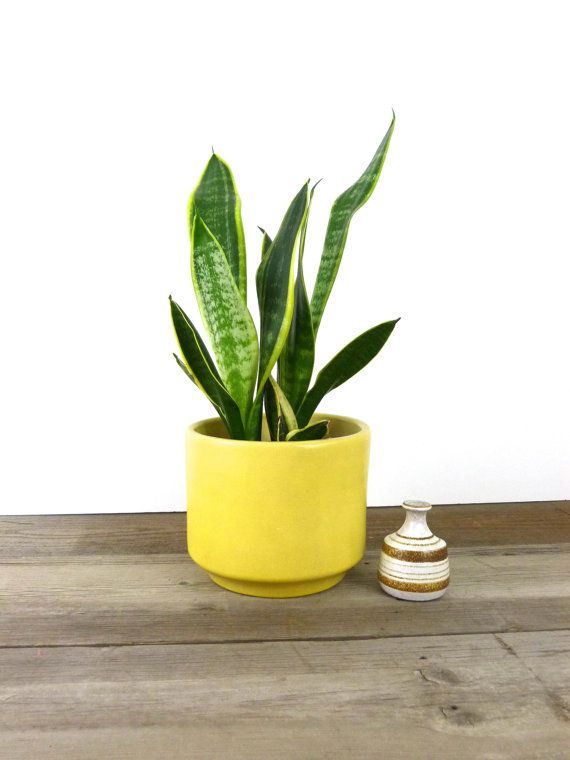nice large ceramic planter by gainey ceramics mid century modern design in a canary yellow color the planter is in good vintage condition with - Large Ceramic Planters