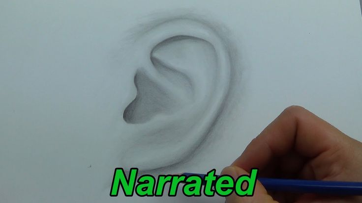 How To Draw A Realistic Ear (Narrated Step by Step) - http ...