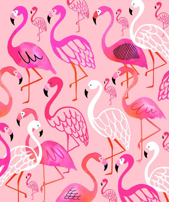 Margaret Berg Art : Illustration : tropical / jungle