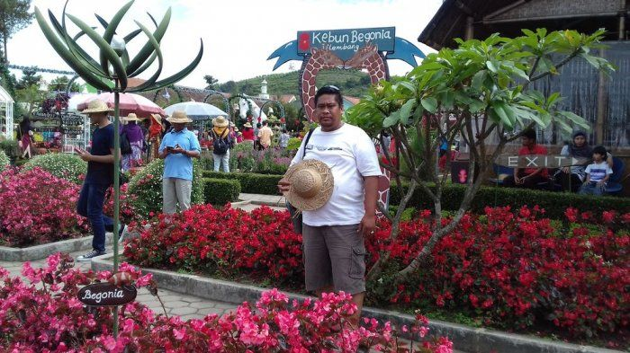 Harga Tiket Kebun Bunga Begonia